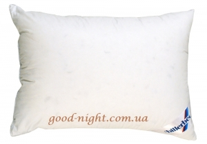ВІОЛА ― good-night